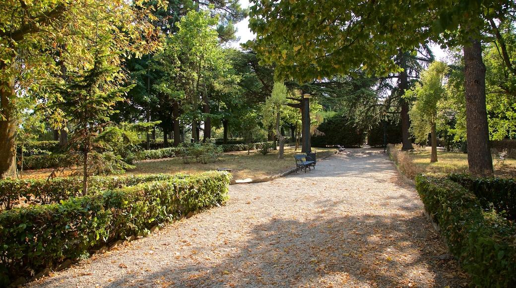 Villa Comunale dei Cappuccini das einen Park