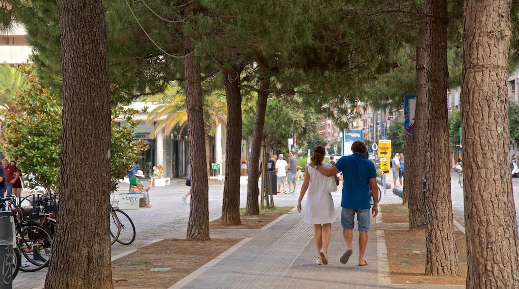 Piazza della Rinascita das einen Garten sowie Paar
