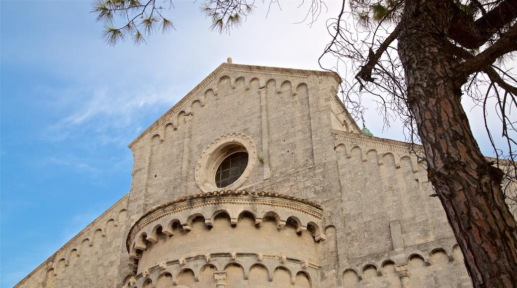 Cattedrale di San Ciriaco caratteristiche di oggetti d\'epoca