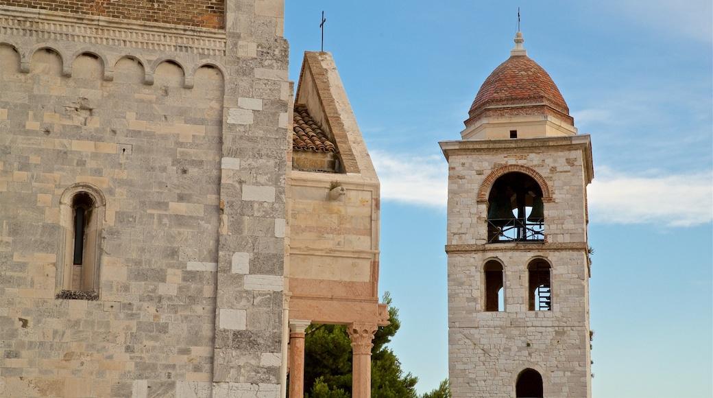 Cattedrale di San Ciriaco mostrando oggetti d\'epoca