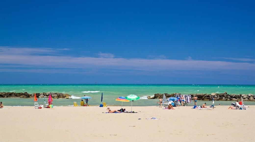 Montesilvano welches beinhaltet allgemeine Küstenansicht, Sandstrand und tropische Szenerien