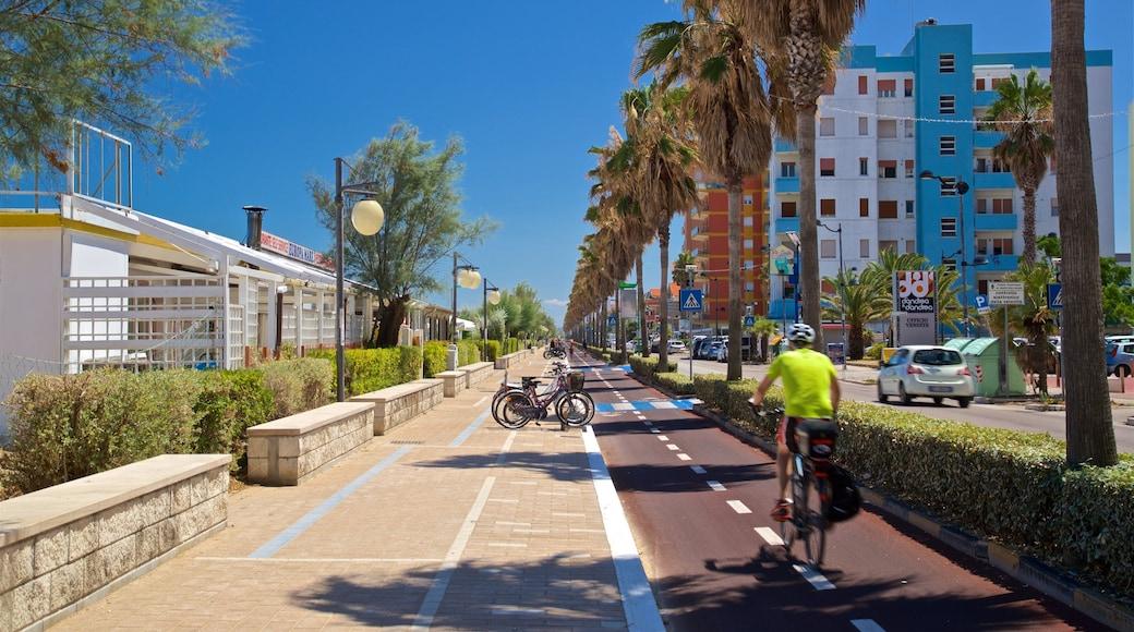 Montesilvano welches beinhaltet Fahrradfahren sowie einzelner Mann