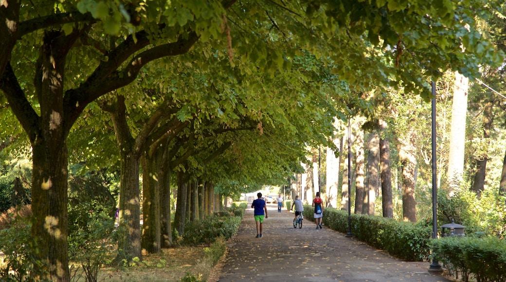 Villa Comunale dei Cappuccini das einen Garten sowie kleine Menschengruppe