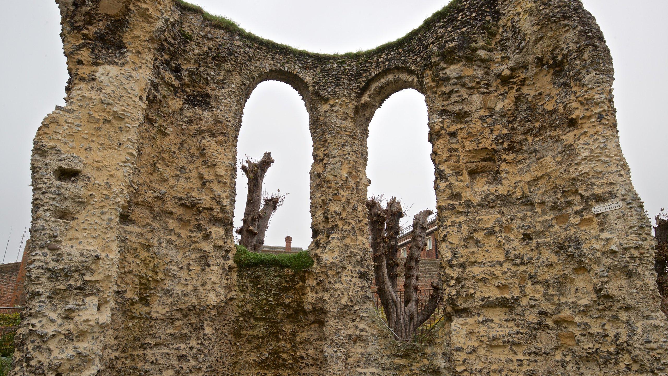Ruïnes van de abdij van Reading, Reading, Engeland, Verenigd Koninkrijk