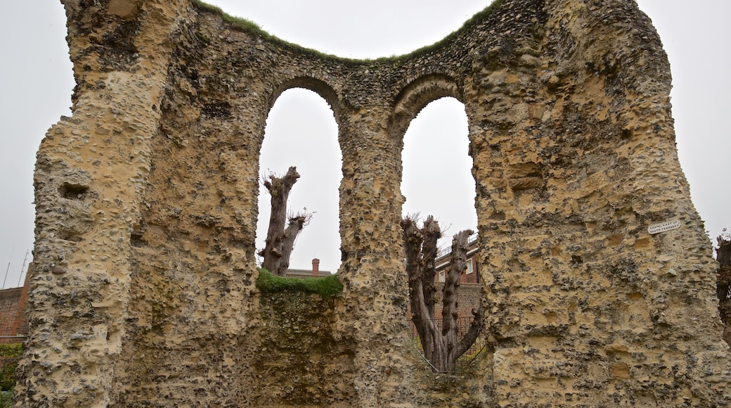 Reading Abbey Ruins which includes a ruin