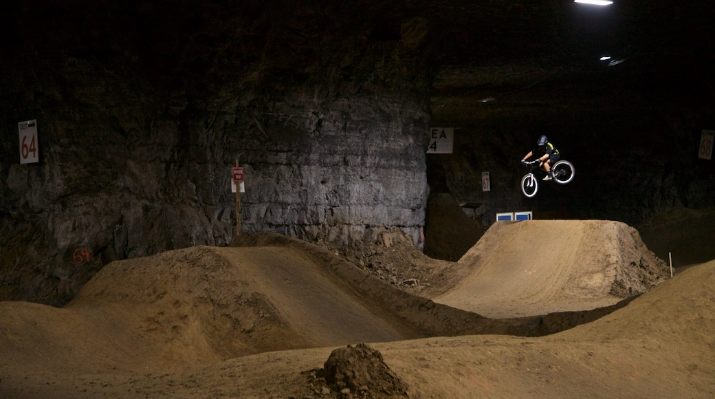 Louisville Mega Cavern showing night scenes, mountain biking and a sporting event