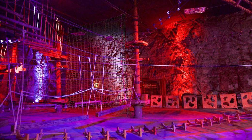 Louisville Mega Cavern showing caves