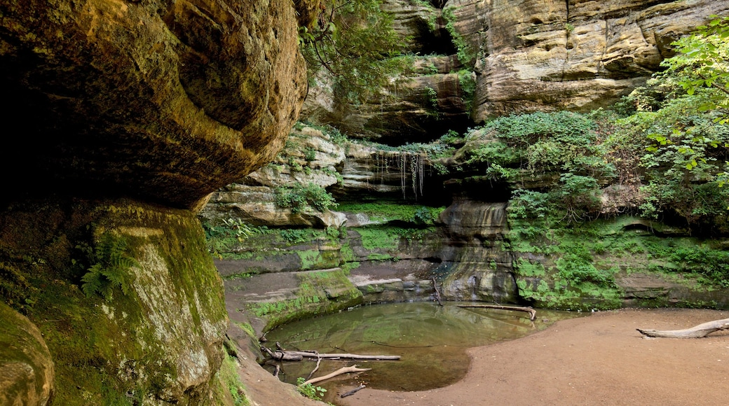 Starved Rock State Park featuring a cascade