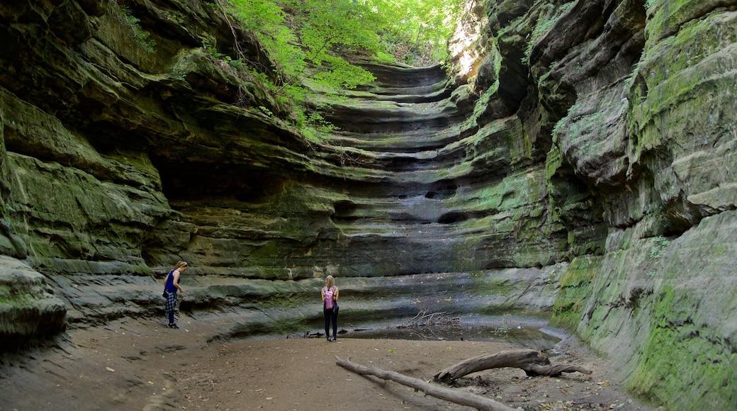 Starved Rock State Park caracterizando cenas de floresta assim como um casal
