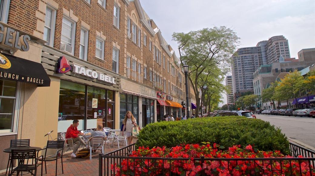 Evanston caracterizando flores