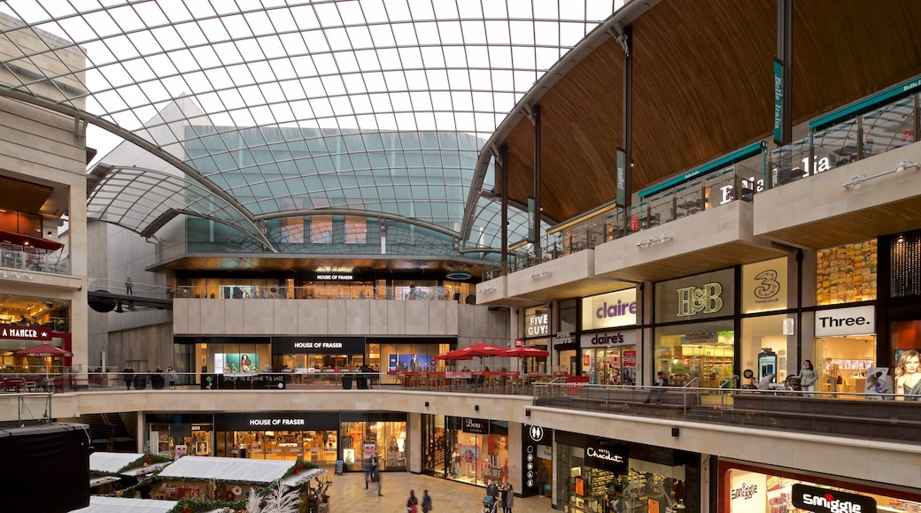 Cabot Circus Shopping Centre which includes shopping and interior views