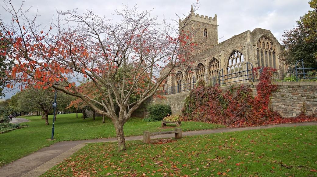 Castle Park showing autumn leaves, heritage architecture and a park