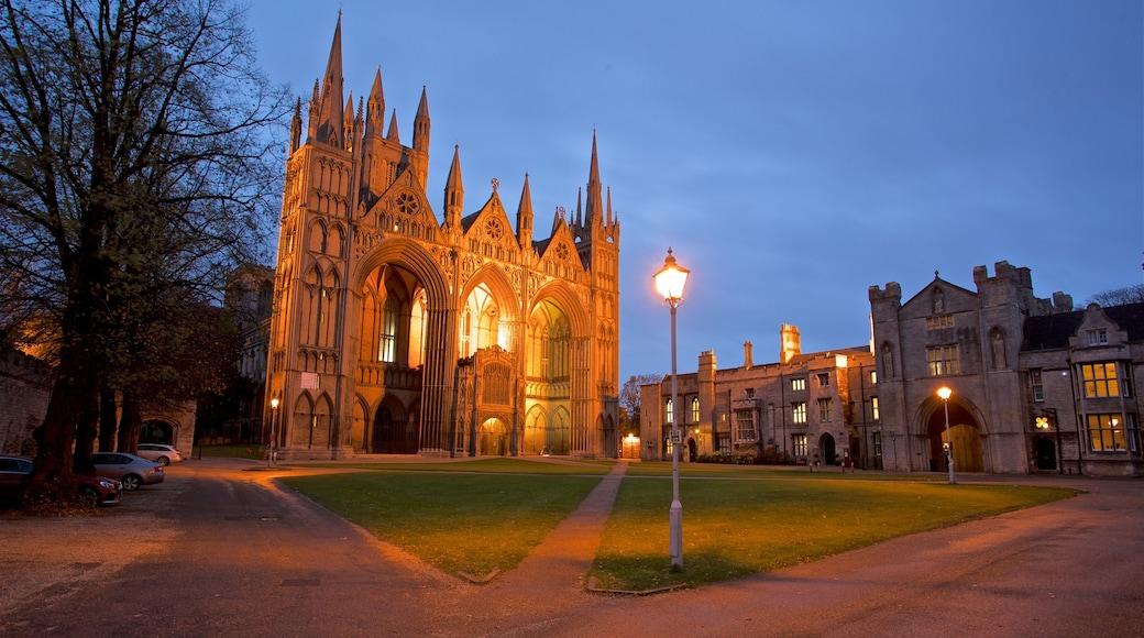Peterborough Cathedral das einen Park, bei Nacht und Kirche oder Kathedrale