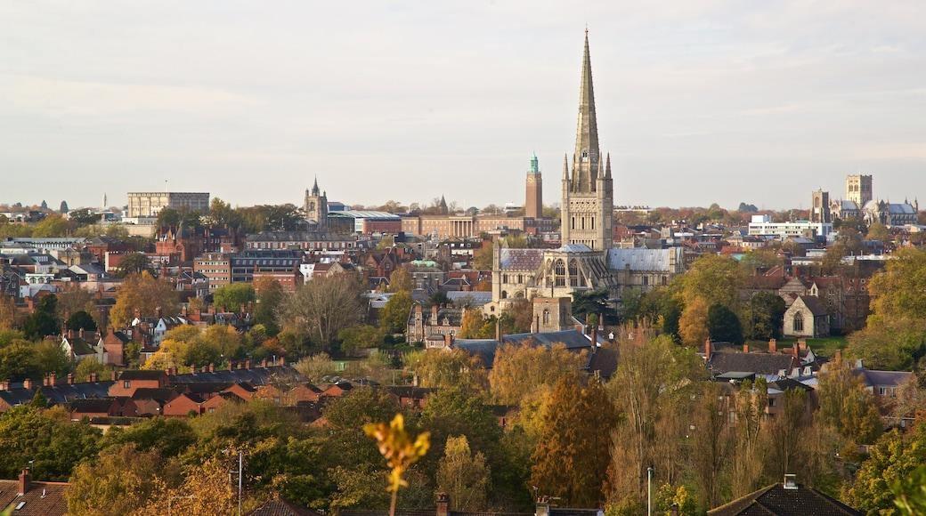 Mousehold Heath mit einem Geschichtliches, Stadt und Landschaften