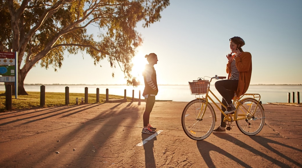 Swan Hill which includes a sunset and cycling as well as an individual female