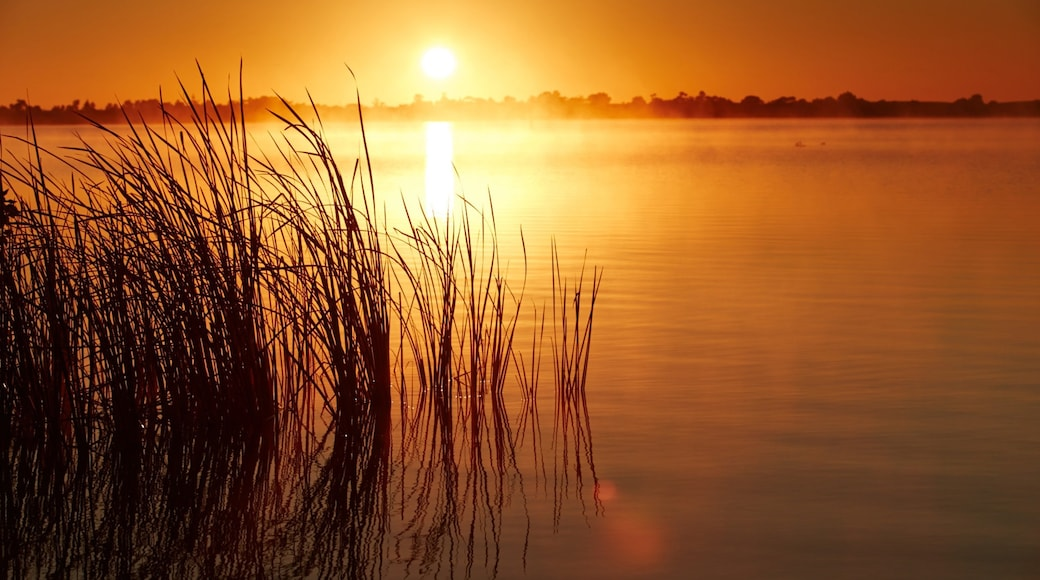 Swan Hill featuring a sunset and wetlands