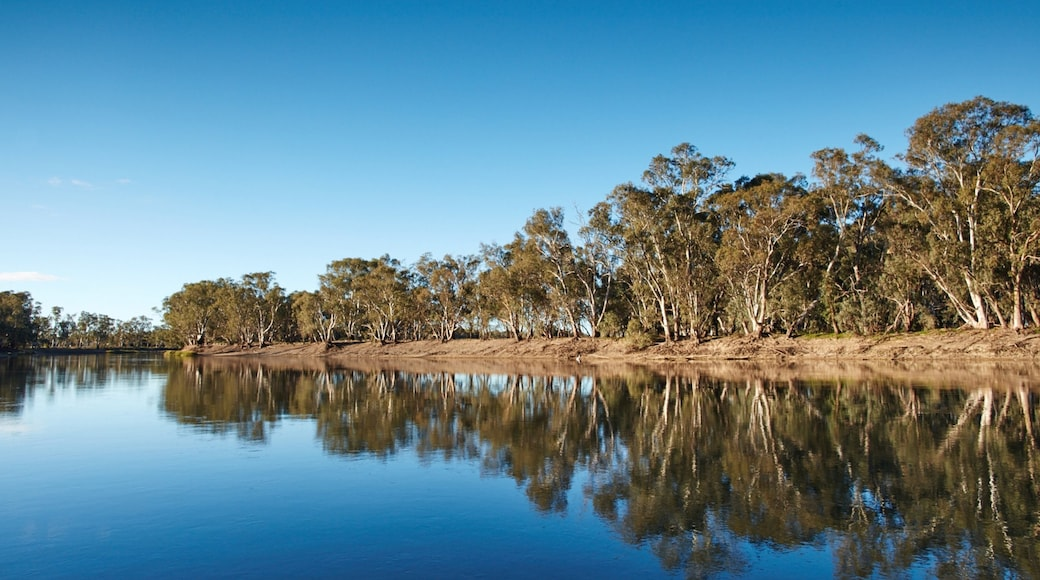 Swan Hill which includes a river or creek