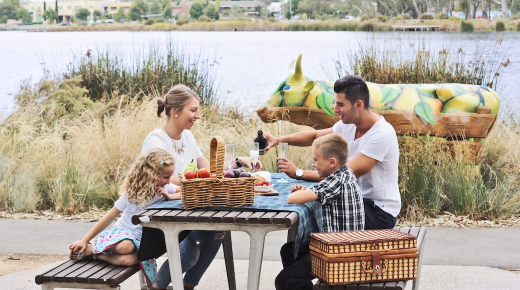 Shepparton which includes picnicking and food as well as a family