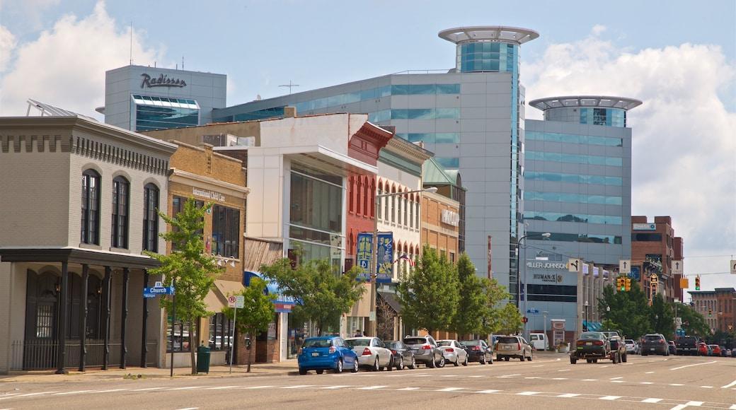 Kalamazoo featuring a city