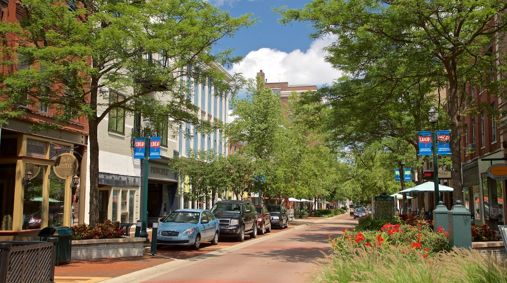Kalamazoo showing wildflowers and a small town or village