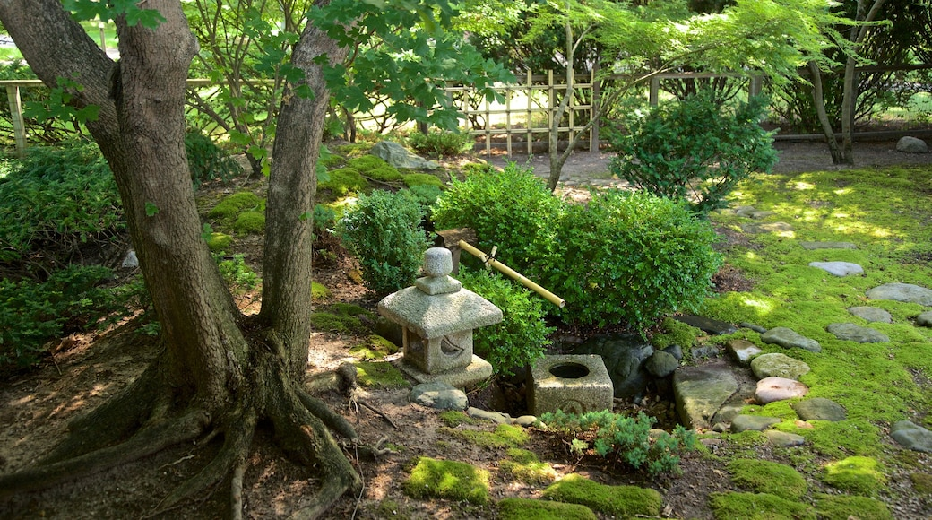 Japanese Cultural Center showing a garden