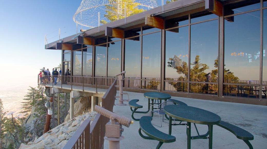 Teleférico de Palm Springs ofreciendo arquitectura moderna y vistas