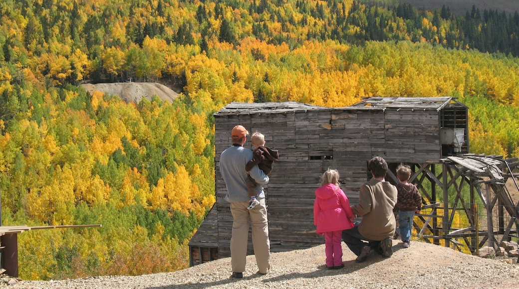 Colorado Springs which includes autumn colours, hiking or walking and forests