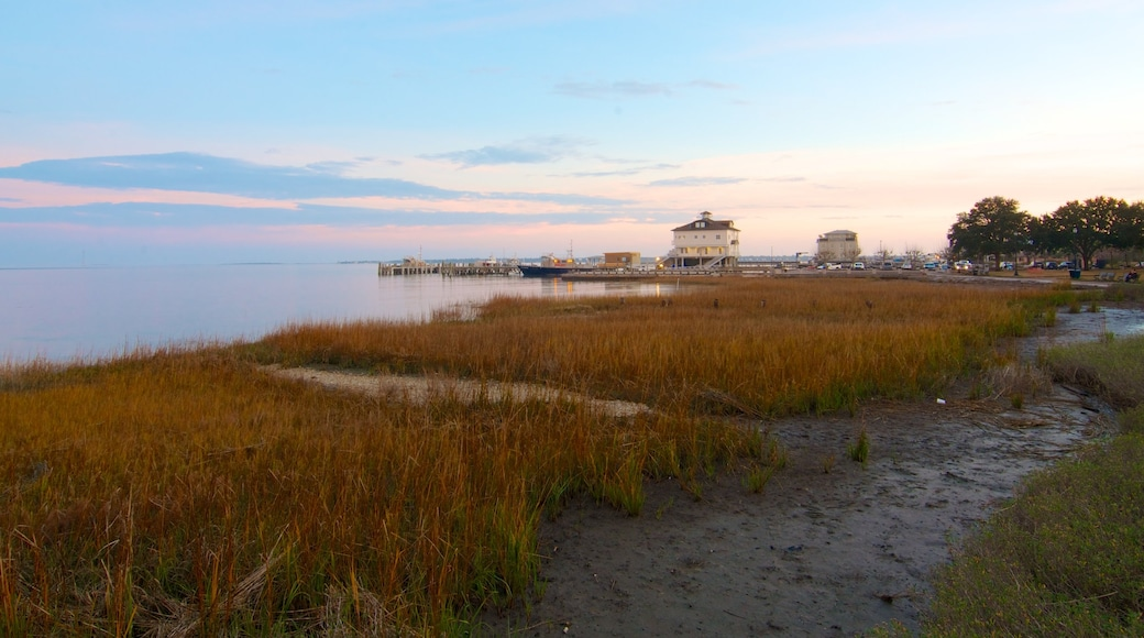 Charleston Waterfront Park featuring autumn colours, a coastal town and landscape views