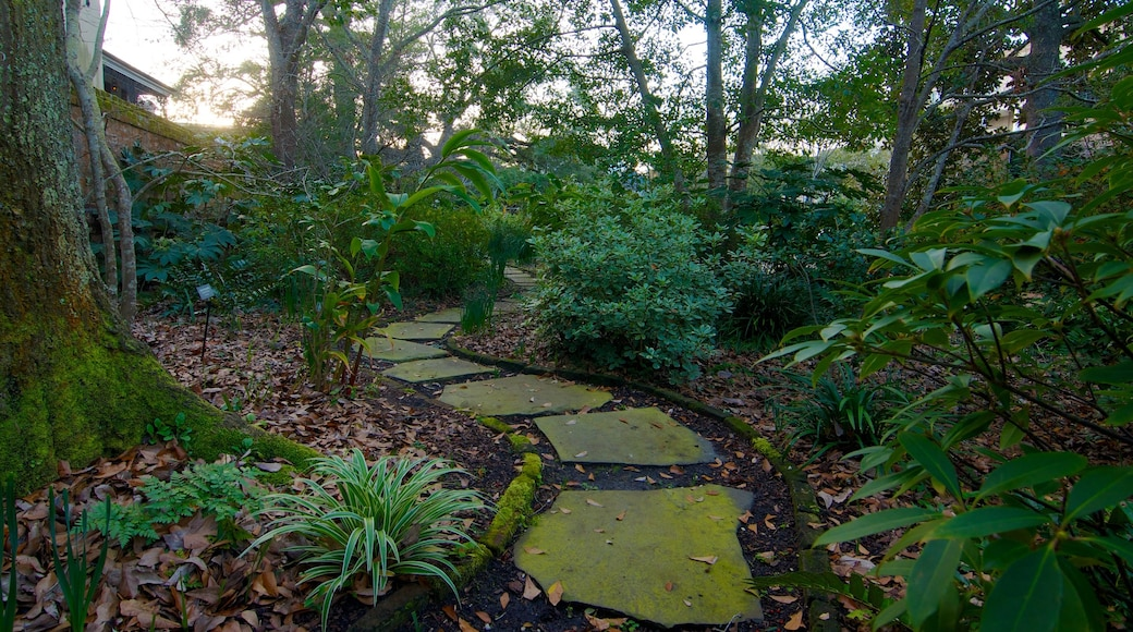 Nathaniel Russell House que inclui florestas