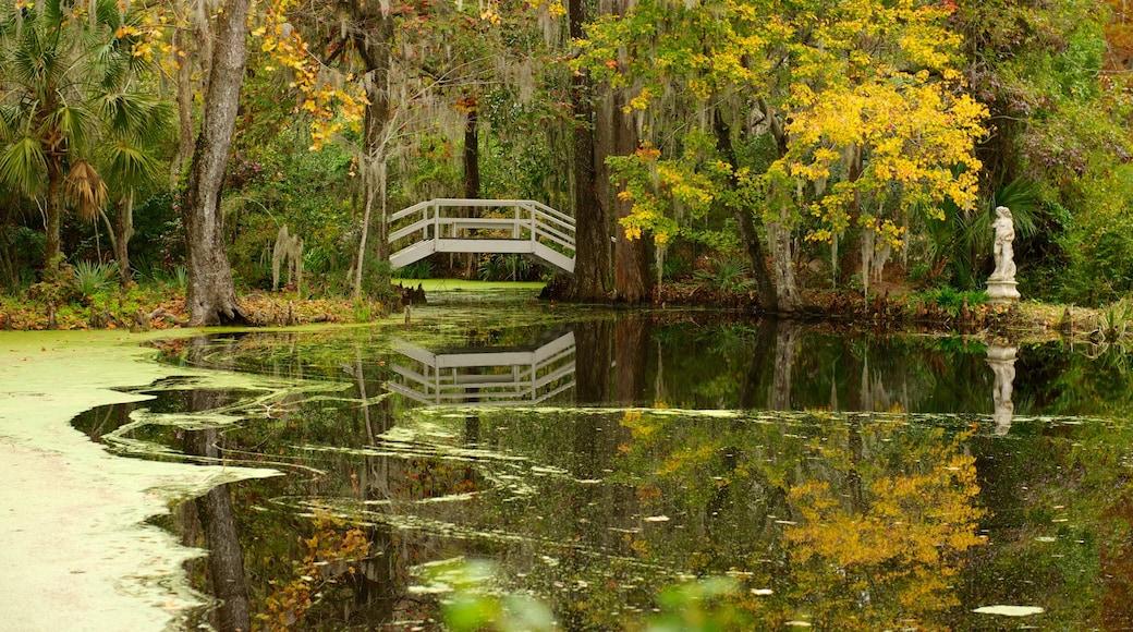 Magnolia Plantation and Gardens caracterizando paisagem, um jardim e um lago