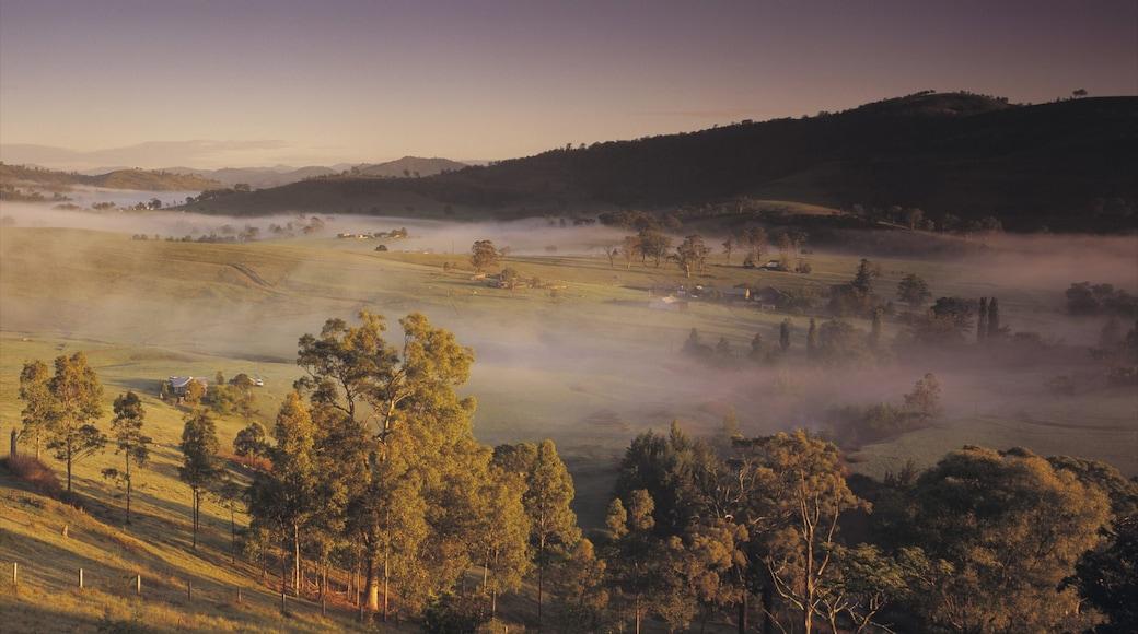 Hunter Valley showing mist or fog and landscape views