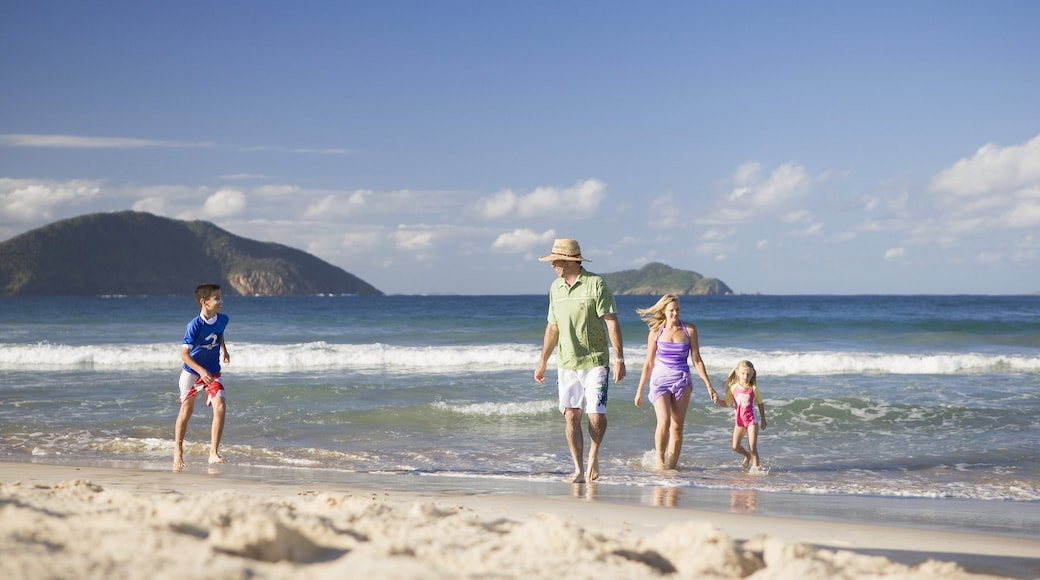Port Stephens featuring a beach, general coastal views and tropical scenes