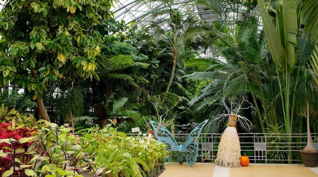 크론 온실 이 포함 실내 전경 과 공원
