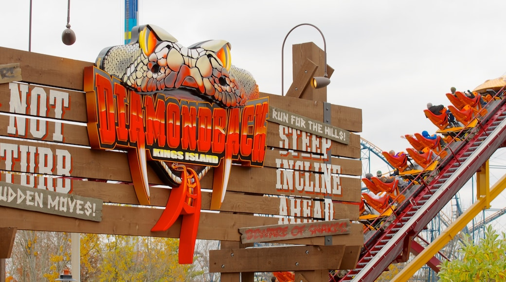 Kings Island showing art, outdoor art and rides