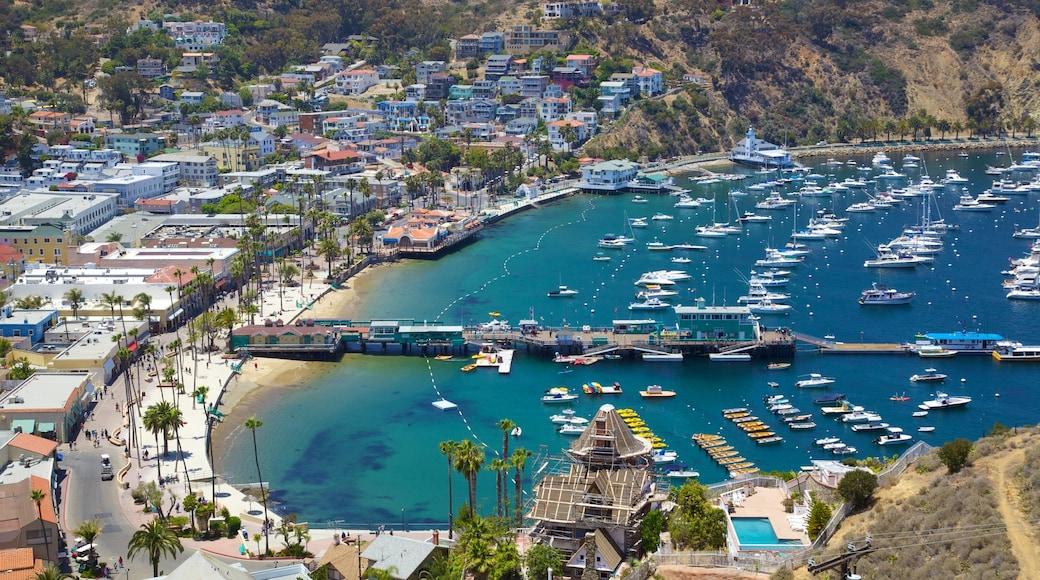 Catalina Island som inkluderar båtkörning, segling och en marina
