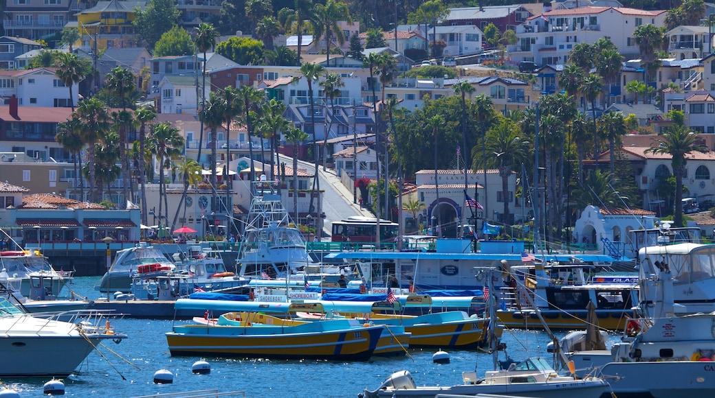 Catalina Island som visar båtkörning, en kuststad och en hamn eller havsbukt