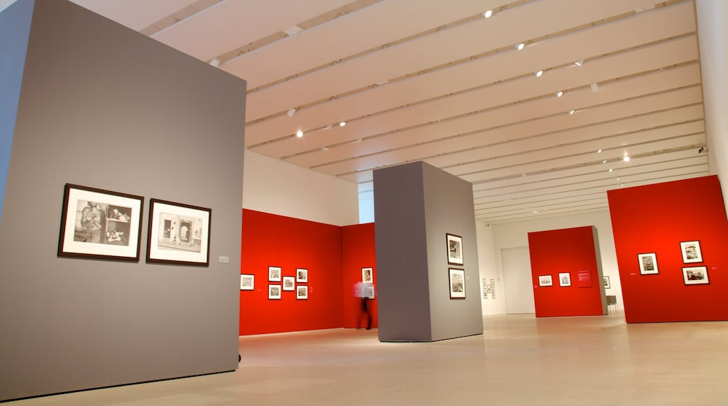 Tampa Museum of Art which includes interior views