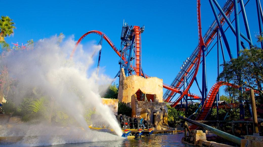 Busch Gardens which includes rides