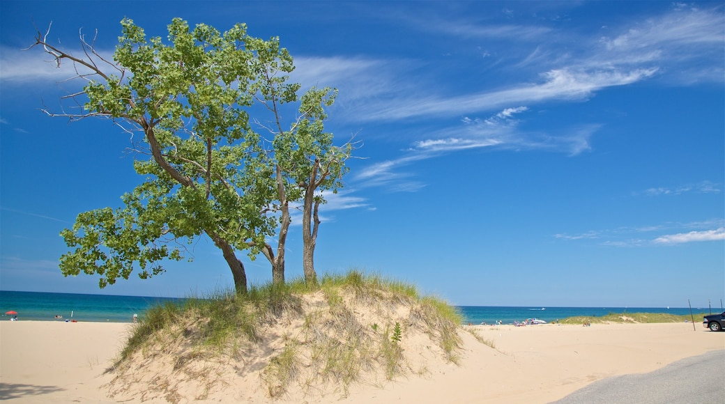 Muskegon State Park featuring general coastal views and a sandy beach
