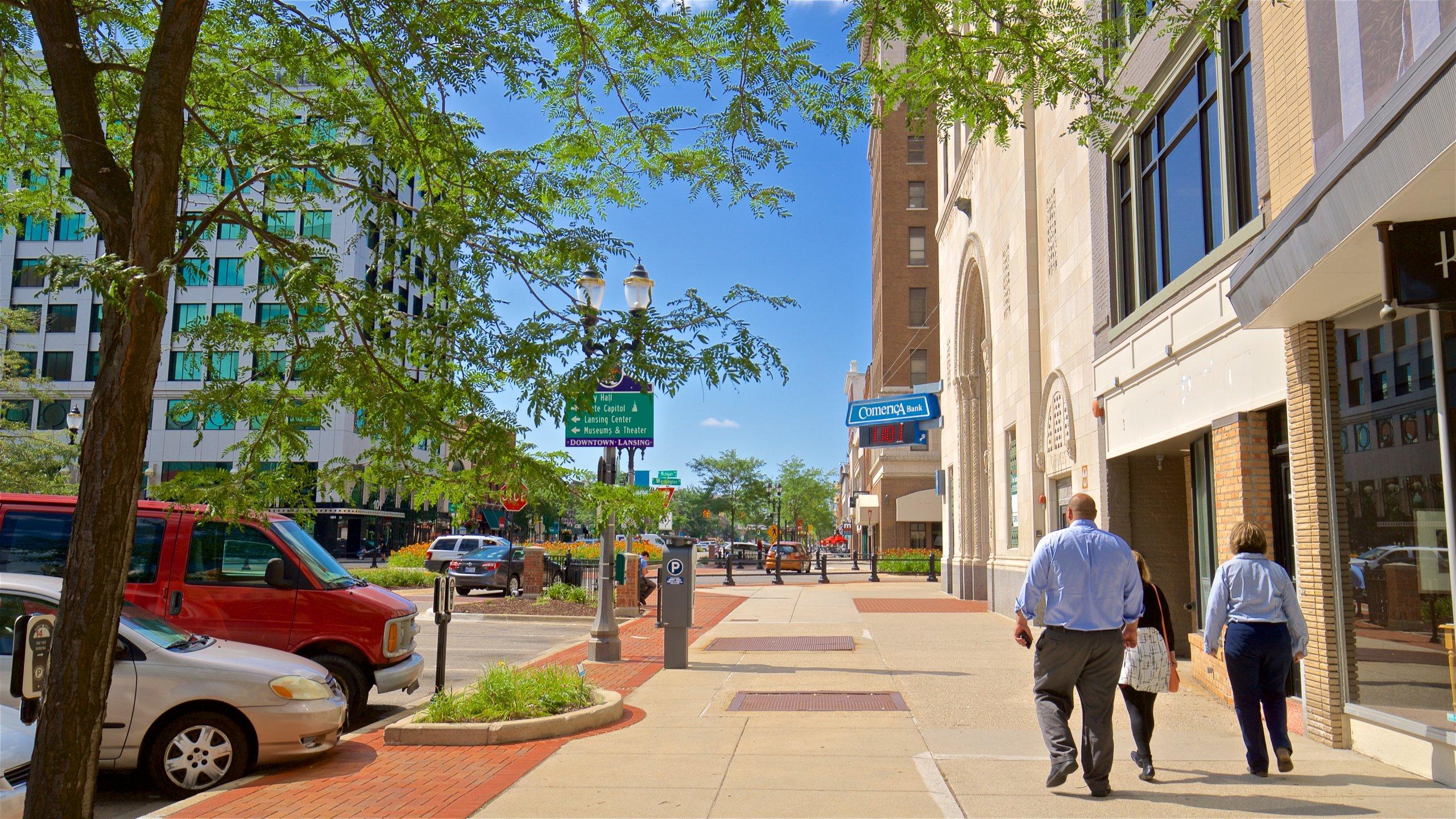 Ingham County, Michigan, United States of America