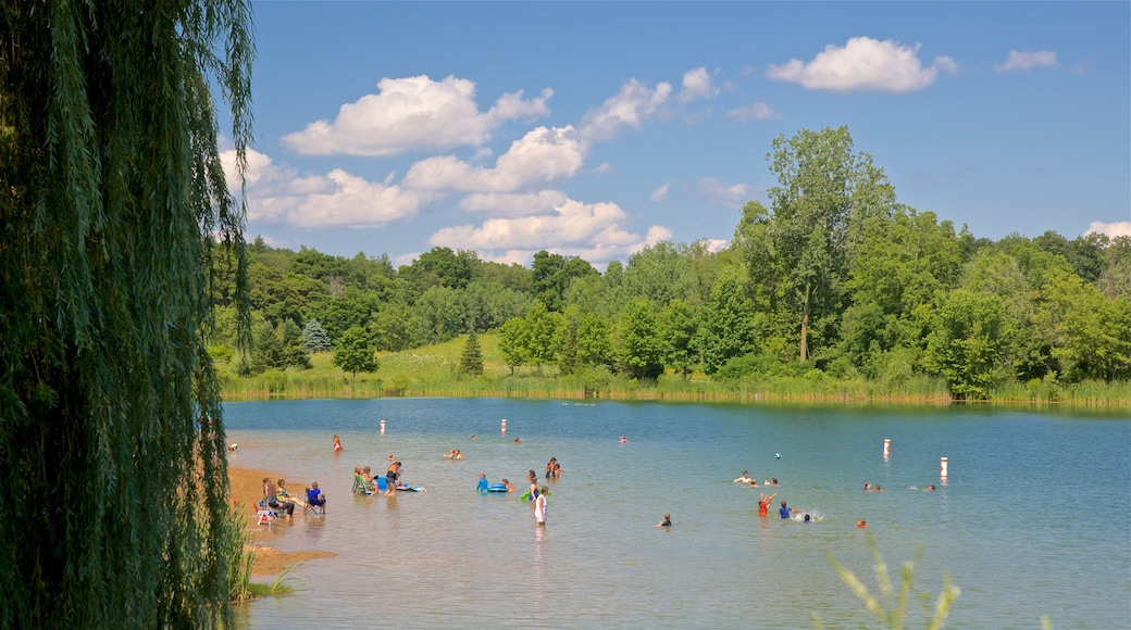 Markin Glen County Park featuring swimming and a lake or waterhole as well as a small group of people