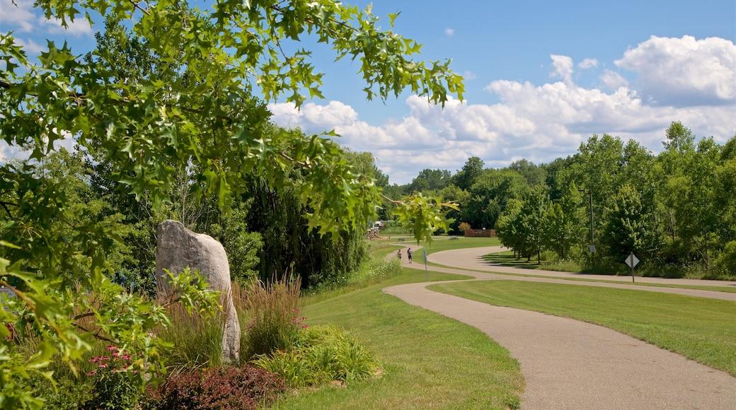 Markin Glen County Park showing a park