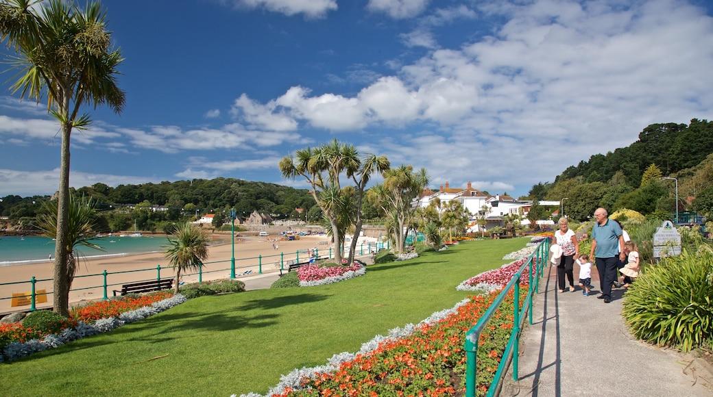 Praia da Baía de St Brelade que inclui um parque e flores assim como uma família