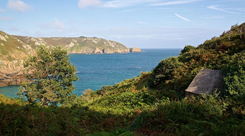 Petit Bot Bay que inclui paisagens litorâneas e litoral rochoso