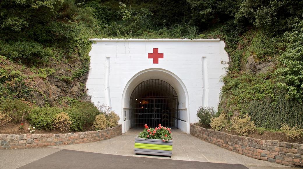 Jersey War Tunnels - German Underground Hospital das einen Blumen