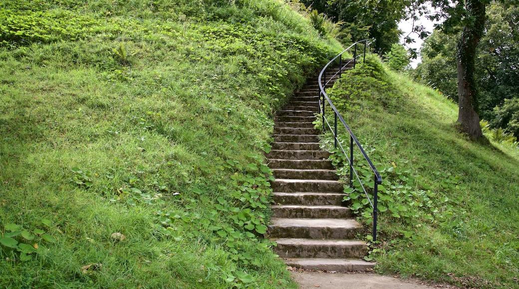 La Hougue Bie mostrando um parque