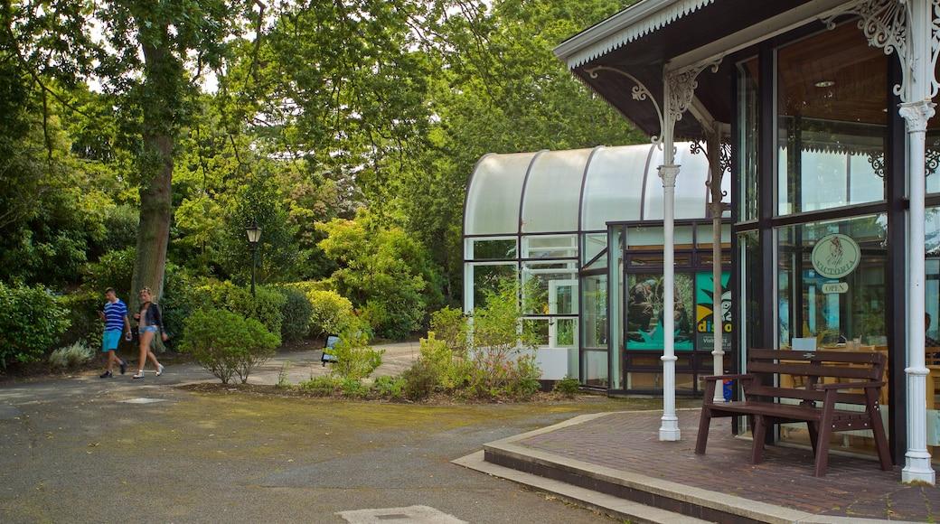 Guernsey Museum and Art Gallery caracterizando escalada ou caminhada assim como um casal