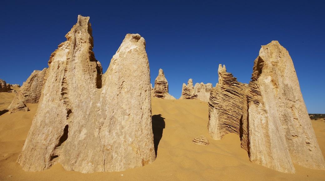 Nambung National Park showing desert views