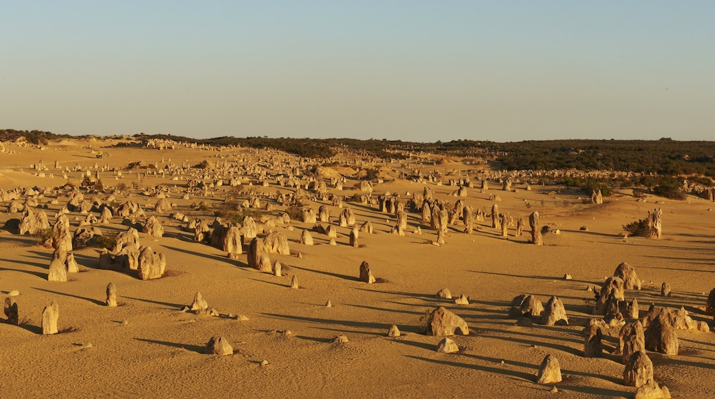 Nambung National Park which includes desert views and landscape views