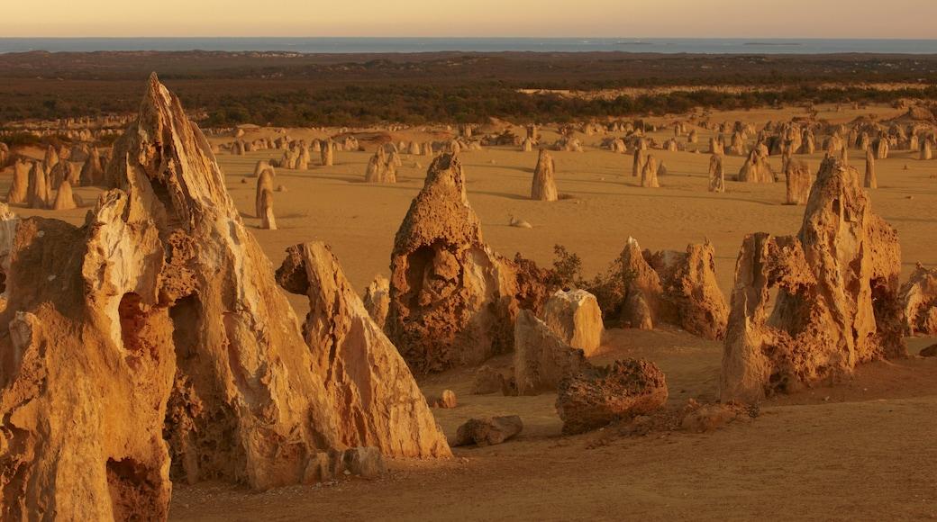 Nambung National Park showing desert views and landscape views